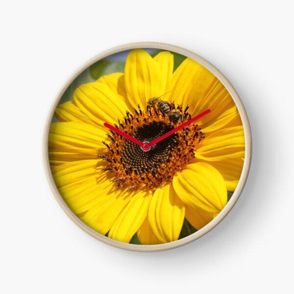 Leuchtende Sonnenblume mit Bienen Uhr
