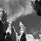 Hoodoos of the Navajo Trail by Alex Cassels