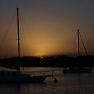 Paradise Point  Moody Evening Sunset by Virginia McGowan