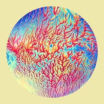 Abstract Color Splash B by blackhalt