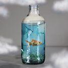 Aquarium Bottle  by damien carroll