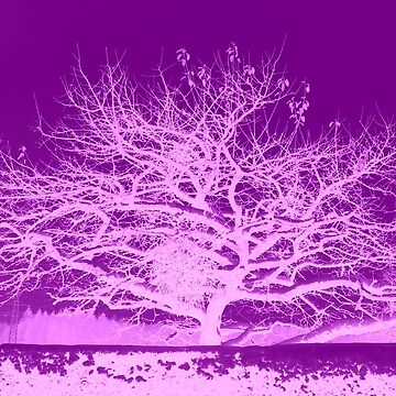 Purple Tree Inversion by angel1