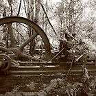 Jaegers saw mill remains by phillip wise
