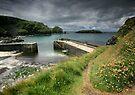 Cornwall : Moody Mullion by Angie Latham
