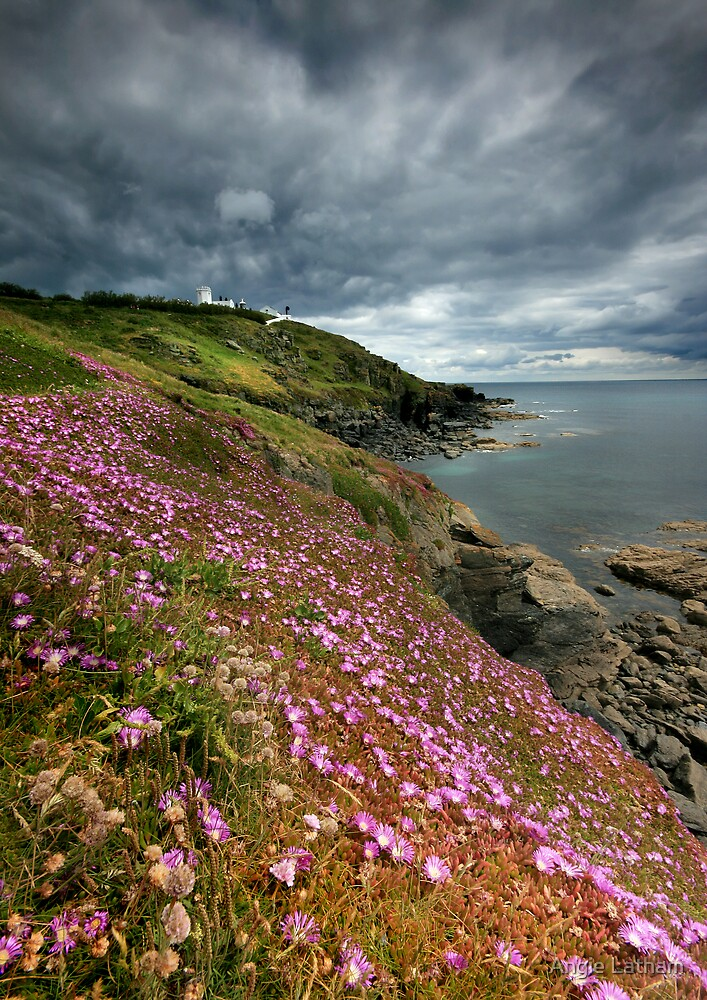 Cornwall : Flowering Lizard 2 by Angie Latham