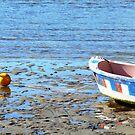 Beached Alone by coastal