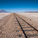 Railroad to Nowhere by Anita Harris