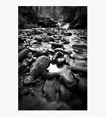 Mercurial Photographic Print