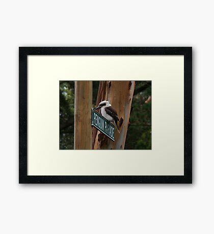 """""""Penguins,"""" he laughed Framed Print"""