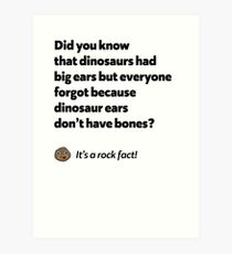 It's a rock fact! #2 Art Print