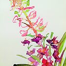 Rosebay Willowherb by Jennifer J Watson