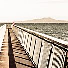 Fishing from the Ocean Pier by yurix