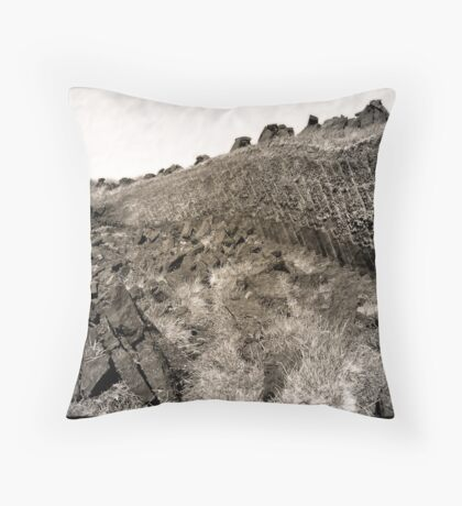 paets bank Throw Pillow