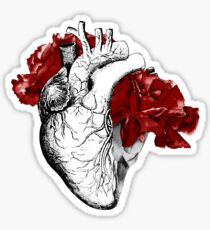 Anatomical Heart With Red Flowers Sticker