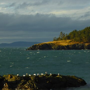 The Strait of Juan de Fuca by elainebawden