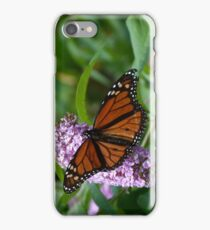 A Visiting Monarch iPhone Case/Skin