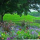 A Beautiful Park by Linda Miller Gesualdo