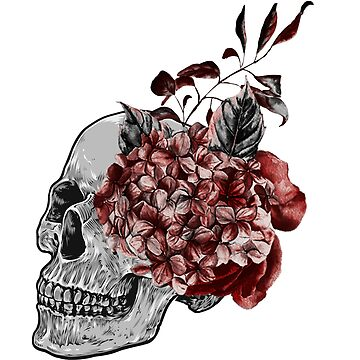 Floral Skull - Anatomical Summer Flowers by kaespo