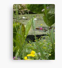 Inverewe pond garden Canvas Print