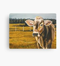 Gretchen, protrait of a Brown Swiss Cow Canvas Print