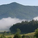 Cades Cove Early Morning by Sherri Hamilton