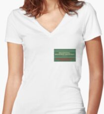 Delightful Delicious Delovely Fitted V-Neck T-Shirt
