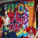 Woodstock Retro by Colleen Drew