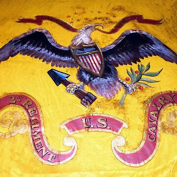 Civil War Eagle on a US Cavalry Flag by SiliconValleyUS