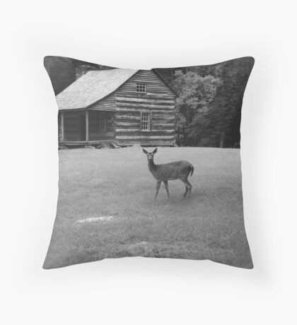 Glimpse of Yesterday Throw Pillow