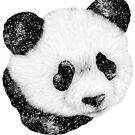 Cosmic Panda by ECMazur