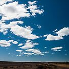 Patagonia Road I by Anita Harris