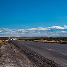 Patagonia Road II by Anita Harris