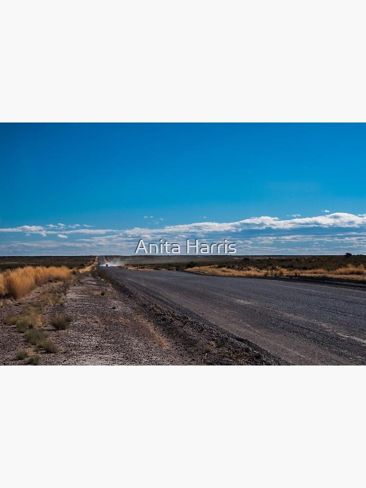 Patagonia Road II by plasticflower