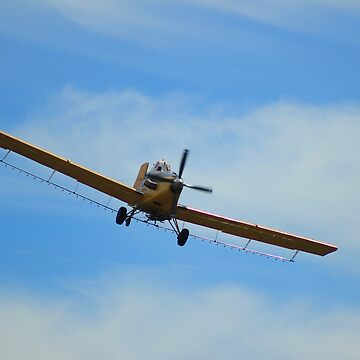 Airplane and Blue Sky by rhamm