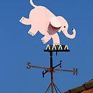 Flying Pink Elephants? by Virginia N. Fred