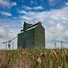 Trochu Alberta Grain Elevator by Steve Boyko