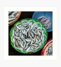 Basins of Fish Art Print