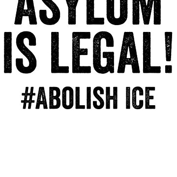 ASYLUM IS LEGAL!Abolish Ice-End Family Separation-The U.S. Immigration Debate by Girlscollar