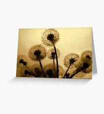 Dandelion Bouquet Greeting Card