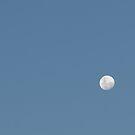 Moon Rise by Andrew Trevor-Jones