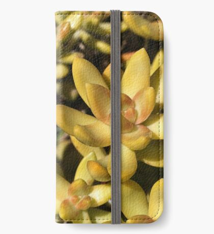 Greens Of A Succulent iPhone Wallet