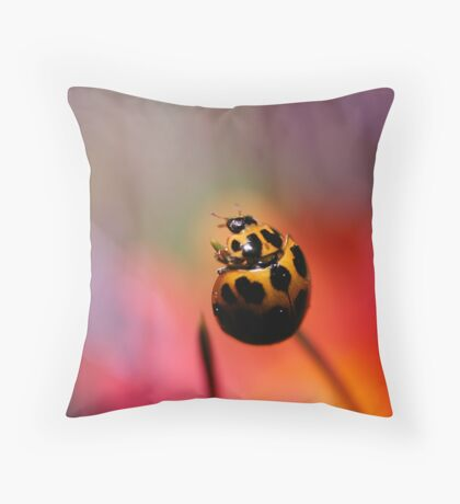 Ready to fly! Throw Pillow