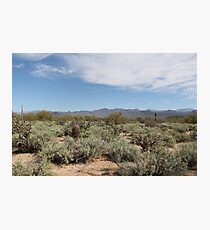 McDowell Mountain Regional Park Photographic Print