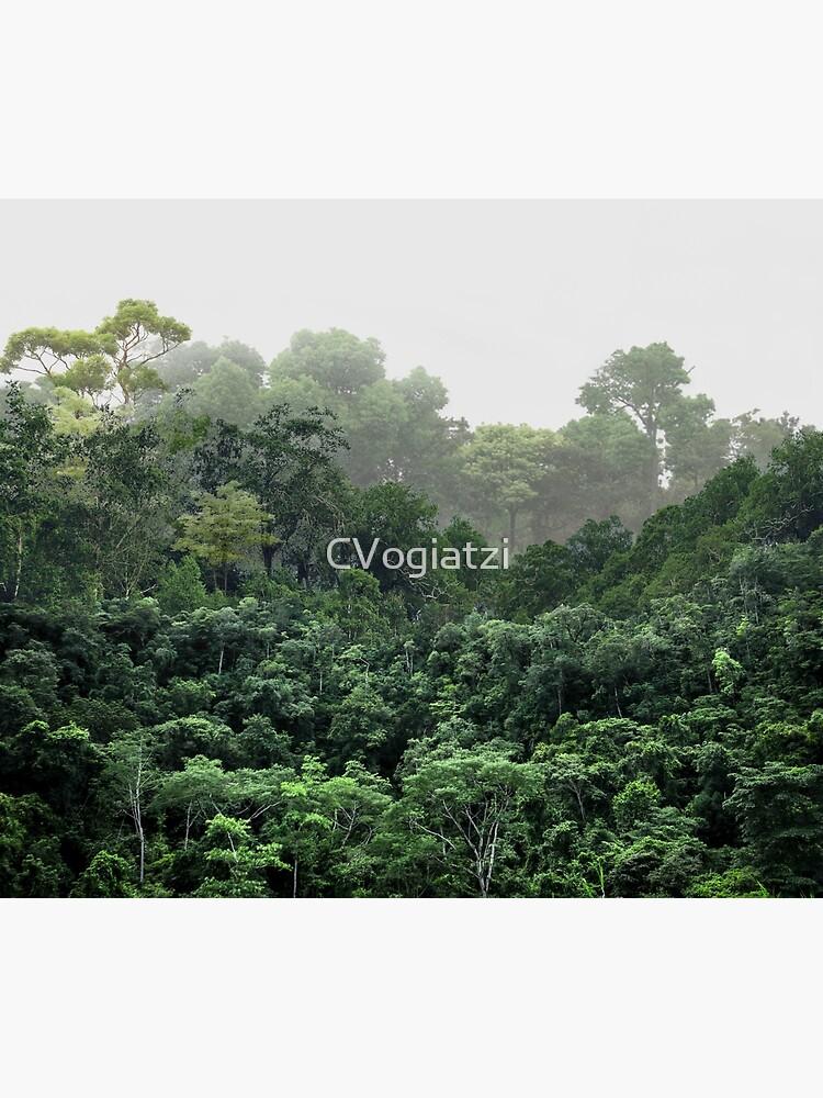Tropical Foggy Forest by CVogiatzi