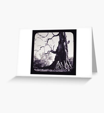 Wildman Greeting Card