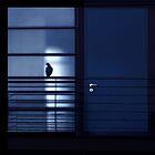 The Window ...  by Angelika  Vogel