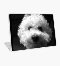 Bichon Frise - Schwarz und Weiß Laptop Folie