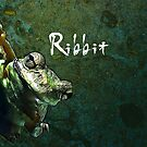 Ribbit by Mark Salmon