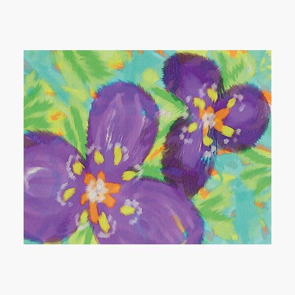 Iris  Fotodruck