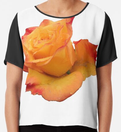 Blume, die orange Rose, Rosen Chiffontop